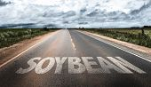 stock photo of soybeans  - Soybean written on rural road - JPG