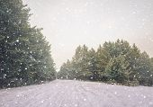 Wintry Landscape Scenery With Flat County And Woods, Snow Landscape Background For Retro Christmas C poster