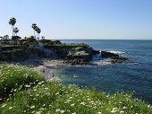 La Jolla Cove, Ca
