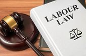 Labour Law Book And Gavel. Consumer Protection Book And Gavel. L poster