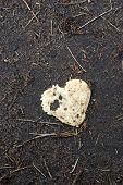 Broken Heart Lying On The Ground