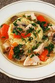 Plate with chicken noodle soup