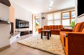 Modern Condo Apartment Living Room With Sofa And Armchair. poster