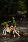 The Freshness Of The Children Rural In The Rainy Season.children Are Happy To Play And Hold Green Um poster