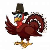 stock photo of gobbler  - A cartoon thanksgiving turkey in a pilgrim hat on white background - JPG