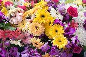 many of flower in wedding ceremony