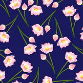 Pink Indian Lotus On Navy Blue Background. (nelumbo Nucifera,sacred Lotus, Bean Of India, Egyptian B poster