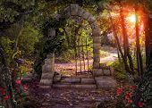 Magical Gate Doorway Path In A Enchanted Fantasy Forest. 3d Render poster