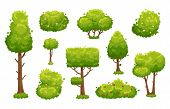 Cartoon Trees And Bushes. Green Plants With Flowers For Vegetation Spring Backyard Landscape Wood Pl poster