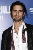 LOS ANGELES - NOV 6: Tyson Ritter at the 'Jack And Jill' World  Premiere at Regency Village Theater on November 6, 2011 in Los Angeles, CA