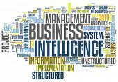 BI - Business intelligence concept in word tag cloud isolated on white