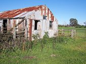 Old Rural Farm Shed And Life Stock Loading Ramp At A Rural Setting In The Late Afternoon Sun, Victor poster