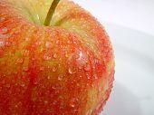 Fresh Apple poster