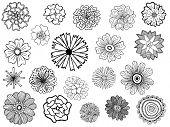 set of cute vector doodle flowers