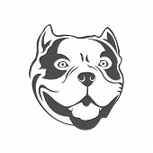 American Bully Dog. Bully Head Vector Template. poster