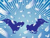 pic of fighting-rooster  - Rooster fight - JPG