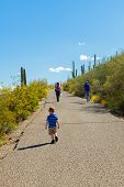 Three Generations, A Grandfather, Father, And Two Children, Hike Up The Paved Path Of A Desert Mount poster