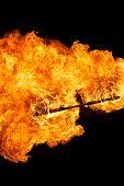 Pau de fogo