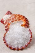 White Rock Sea Salt In Sea Shell On Paper And Second Shell Background