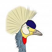 Hombre de aves exóticas