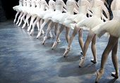 image of ballet dancer  - Professional Ballerinas on Stage shallow depth of field