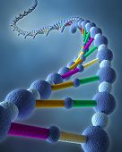 Abstract DNA Chains