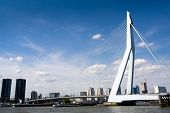 Meuse River And Erasmus Bridge