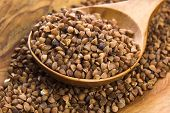 stock photo of buckwheat  - Buckwheat seeds on wooden spoon in closeup - JPG