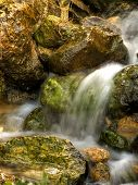 Flowing Springwater