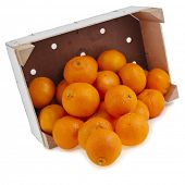 ripe mandarines in wooden crate box isolated on white