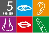 pic of sensory perception  - Five senses icon set  - JPG