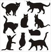 pic of cat-tail  - vector silhouettes of running - JPG