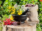 picture of tansy  - healing herbs in mortar and in sack herbal medicine - JPG