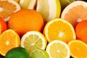 foto of pamelo  - Lots ripe citrus close - JPG