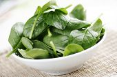 fresh spinach on white bowl