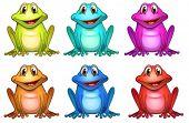 Ilustración de los seis colores diferentes de ranas sobre un fondo blanco