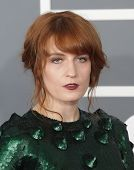 LOS ANGELES - FEB 10:  Florence Welch arrives to the Grammy Awards 2013  on February 10, 2013 in Los