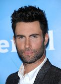 LOS ANGELES - JAN 06:  Adam Levine arrives to the NBC All Star Winter TCA 2013  on January 06, 2013