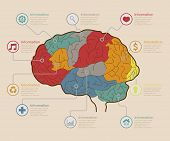Infographic Elements , Brain concept