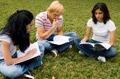 Student Study Group