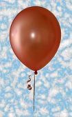 Single Balloon...