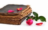 Old Book And Rose Isolated