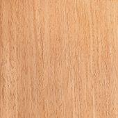 Texture Of Walnut, Wood Grain