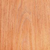 Texture Of Walnut, Wooden Interior