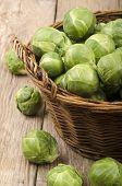 Brussels Sprouts After Harvest In A Basket