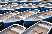 pic of fleet  - A rental row boat fleet is tied together at the end of the day - JPG