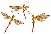 Green Red White Paint Made Dragonfly Set