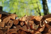 Pile of firewood in the village