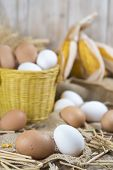image of hen house  - Basket with fresh range eggs and cereals to feed hens in the hen house - JPG