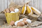 stock photo of hen house  - Basket with fresh range eggs and cereals to feed hens in the hen house - JPG
